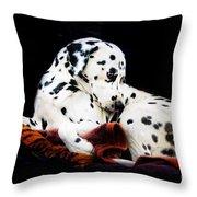 A Dalmatian Prince Throw Pillow