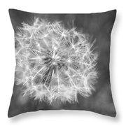 A Dandelion Black And White Throw Pillow