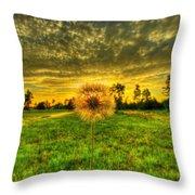 A Dandy Sunset Throw Pillow