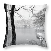 A Dash Of Red Throw Pillow