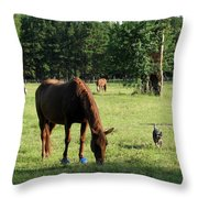 A Day At Chimney Field 1 Throw Pillow