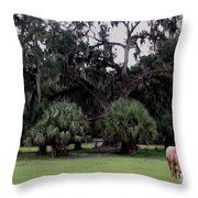 A Day At Chimney Field 2 Throw Pillow