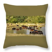 A Day At The Spa Throw Pillow