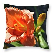 A Day In The Spotlight Throw Pillow