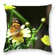 A Day Of Daisies Throw Pillow