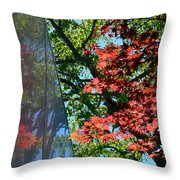 A Day Of Reflection Throw Pillow