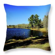 A Day To Ponder Throw Pillow