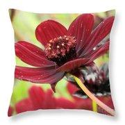 A Deeper Hue Throw Pillow