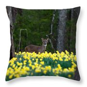 A Deer And Daffodils 4 Throw Pillow