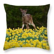 A Deer And Daffodils IIi Throw Pillow