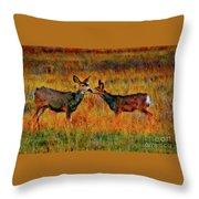 A Deer Kiss Throw Pillow