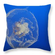 A Delicate Sea Jelly Throw Pillow