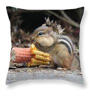 A Delicious Treat - Chipmunk Eating Corn Throw Pillow