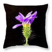 A Desert Flower Throw Pillow