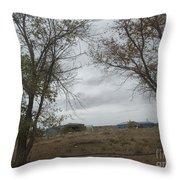 A Desert Ranch Throw Pillow