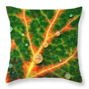 A Designer With Intention Throw Pillow by Rick Furmanek
