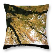 A Different Perspective W Poem Throw Pillow