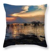 A Different Shoreline Throw Pillow
