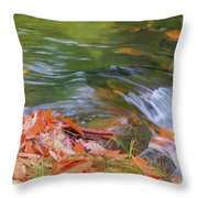 Flowing Water Fall Leaves Closeup Throw Pillow
