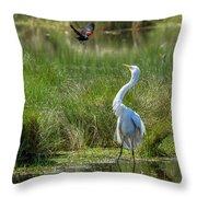 A Disagreement At The Pond Throw Pillow
