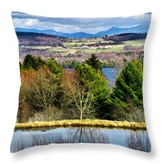 A Distant Jay Peak Throw Pillow