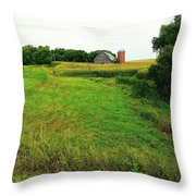 A Distant Longing Throw Pillow