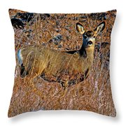A Doe   A Deer Throw Pillow