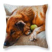 A Dog And His Tennis Ball Throw Pillow