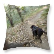 A Dog Backpacking On Pine Ridge Trail Throw Pillow