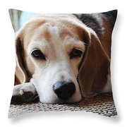 A Dog Thinking Throw Pillow