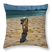 A Dog's Life Throw Pillow