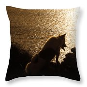 A Dogs View Throw Pillow