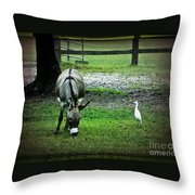 A Donkey And His Bird Throw Pillow
