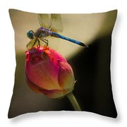 A Dragonfly Rests Momentarily On A Lotus Bud Throw Pillow