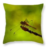 A Dragonfly Smile Throw Pillow