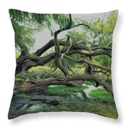 A Dramatic Change Of Perspective Throw Pillow
