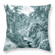 A Drink From Halls Brook Throw Pillow