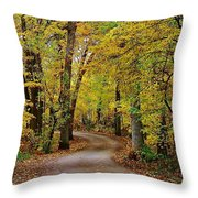 A Drive Through The Park Throw Pillow