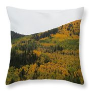 A Drive Throw The Forest In The Fall Throw Pillow