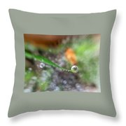 A Drop In Time Throw Pillow