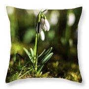 A Drop Of Spring Throw Pillow