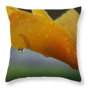 A Drop Of Water Everywhere Throw Pillow