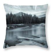 A Dry Winter 2 Throw Pillow