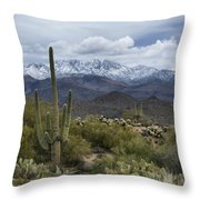 A Dusting Of Snow In The Sonoran Desert  Throw Pillow