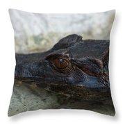 A Dwarf Caiman Paleosuchus Palepebrosus Throw Pillow