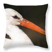 A European White Stork At The Lincoln Throw Pillow