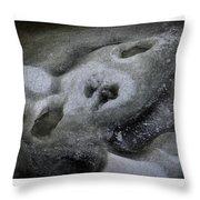 A Face Of Winter Throw Pillow