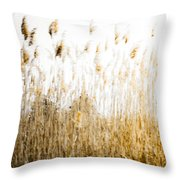 A Faded Memory Throw Pillow