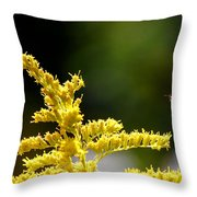 A Fairy Makes A Landing. Throw Pillow