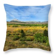 A Fall Day In The Sierras Throw Pillow